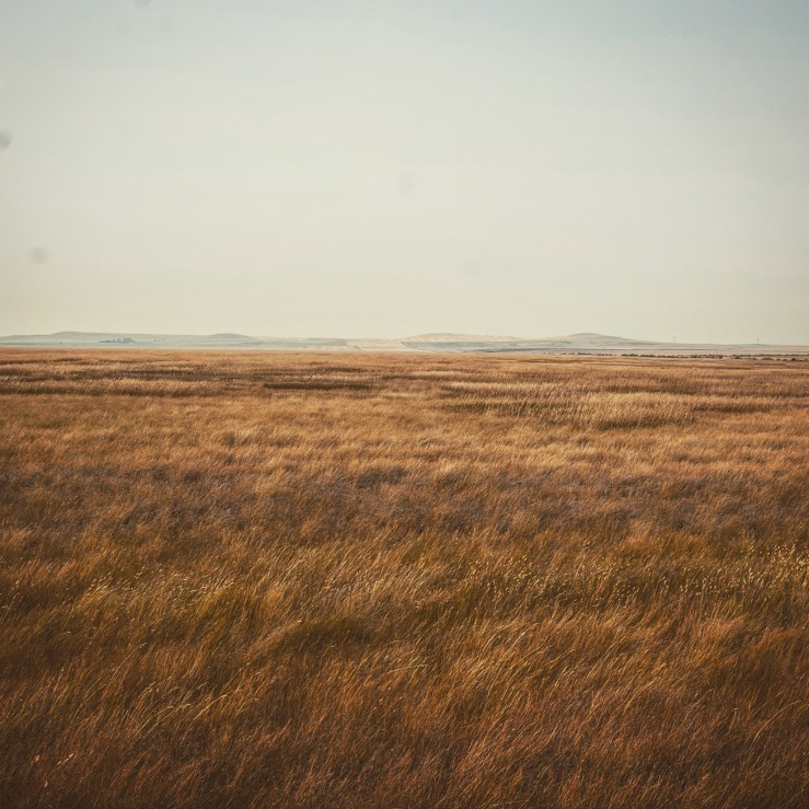 Nothing but wide-open spaces.