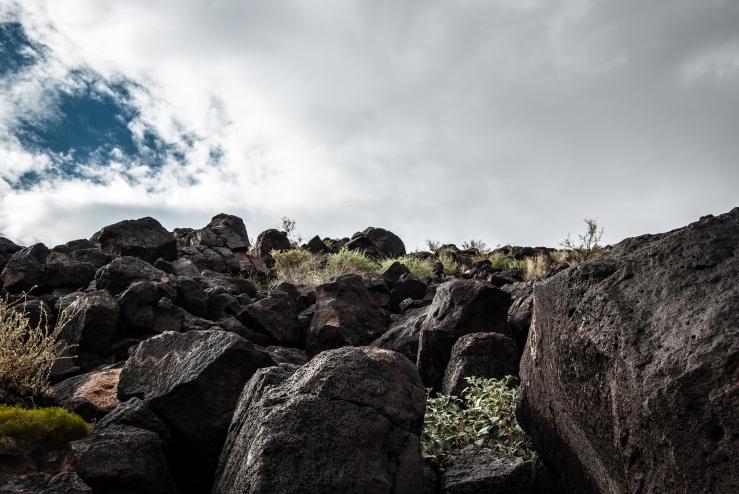 Petroglyph Park 2 (1 of 1)