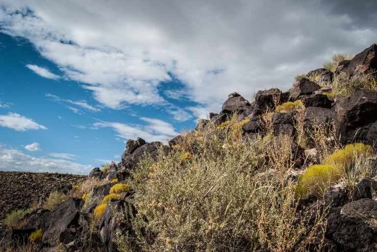 Petroglyph Park Boca Negra Canyon 11 (1 of 1)