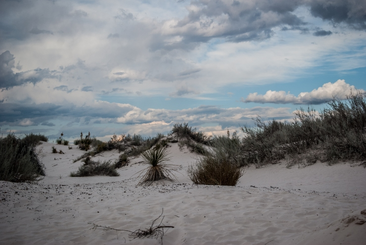 White Sands National Monument 2 (1 of 1)