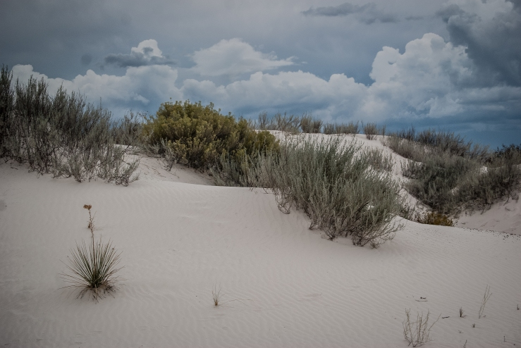 White Sands National Monument 6 (1 of 1)