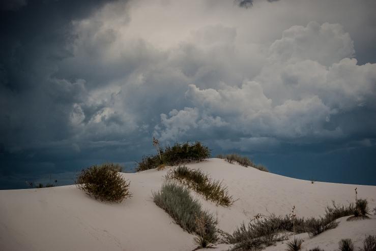 White Sands National Monument 8 (1 of 1)
