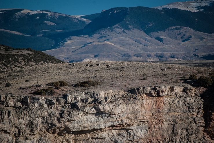 Bighorn Canyon WY 19 (1 of 1)