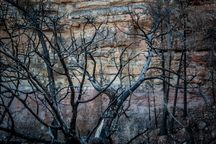 Bighorn Canyon WY 26 (1 of 1)