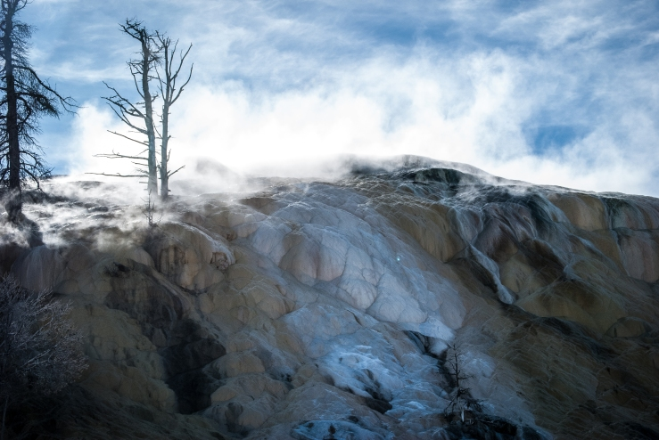 Yellowstone 10 (1 of 1)
