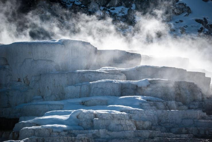 Yellowstone 32 (1 of 1)