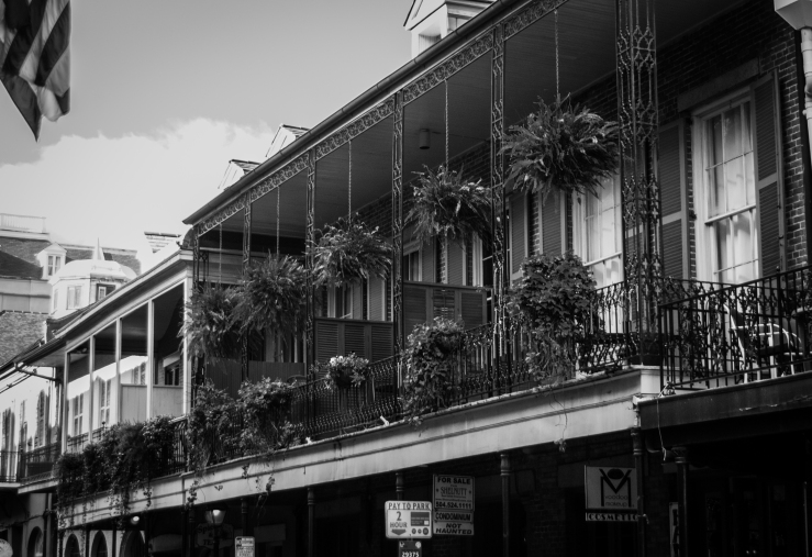 French Quarter 24 (1 of 1)