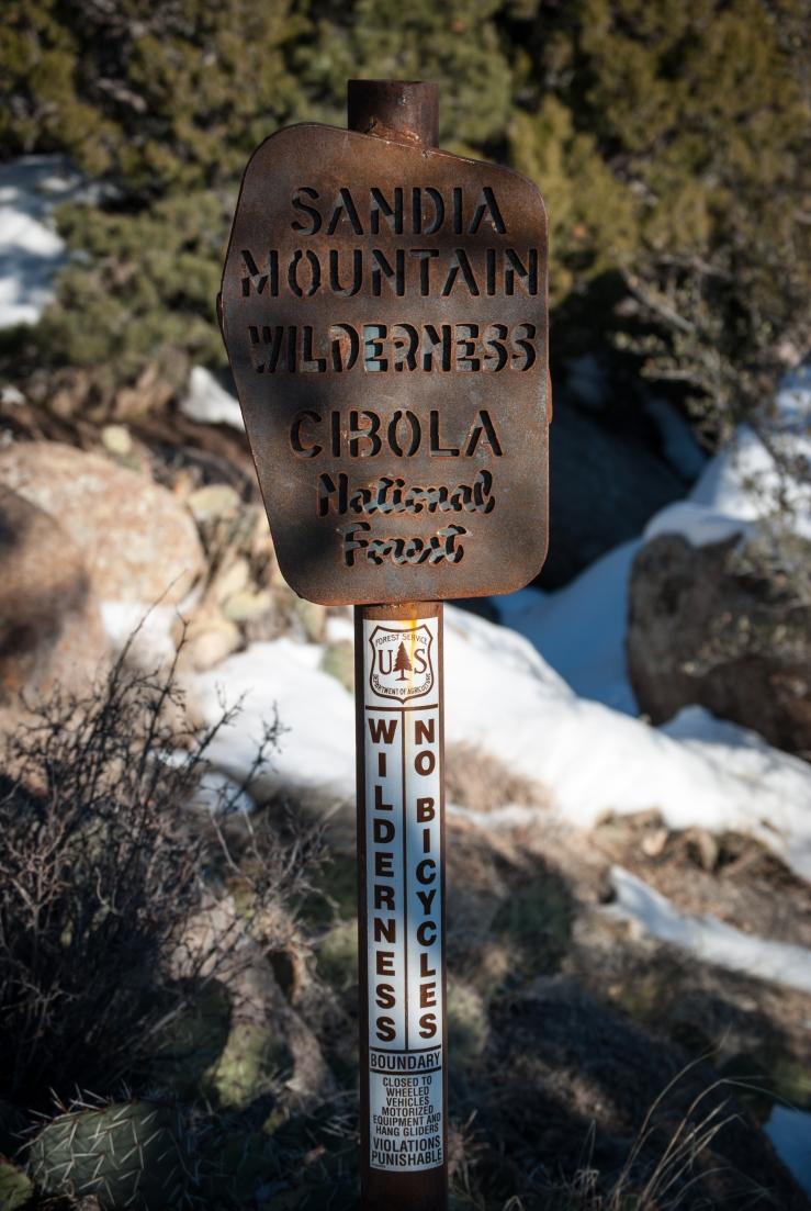 La Luz Trail 16 (1 of 1)