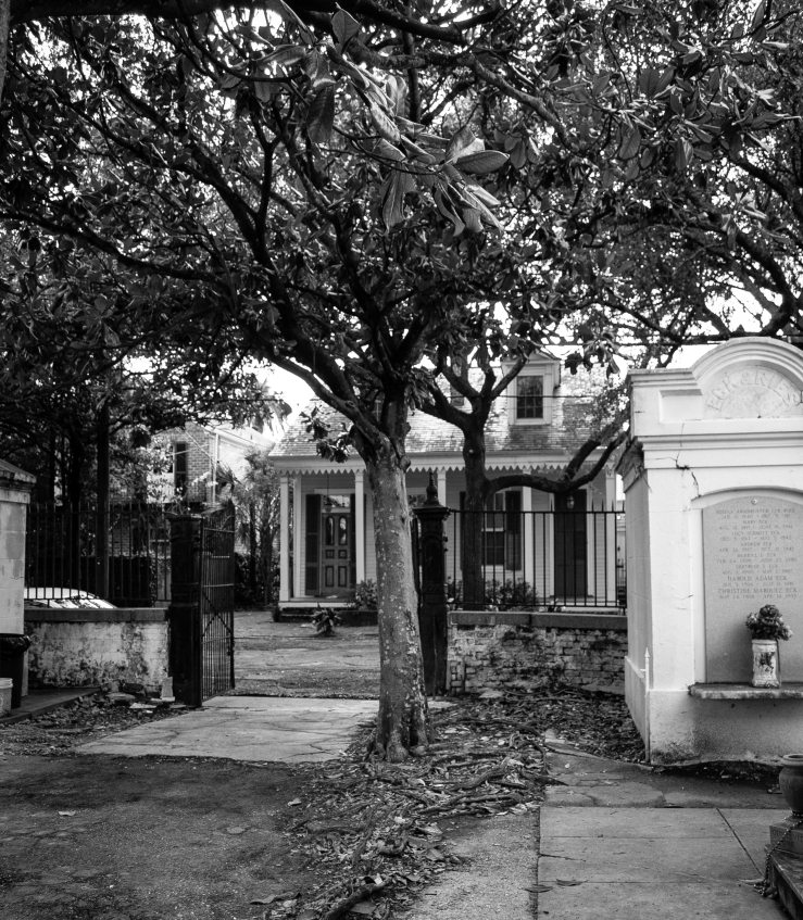 Lafayette Cemetery 26 (1 of 1)