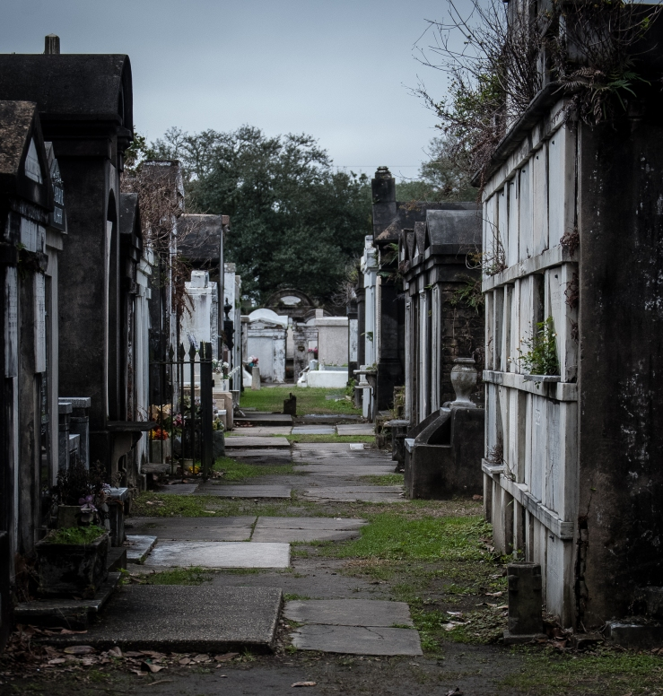 Lafayette Cemetery 3 (1 of 1)