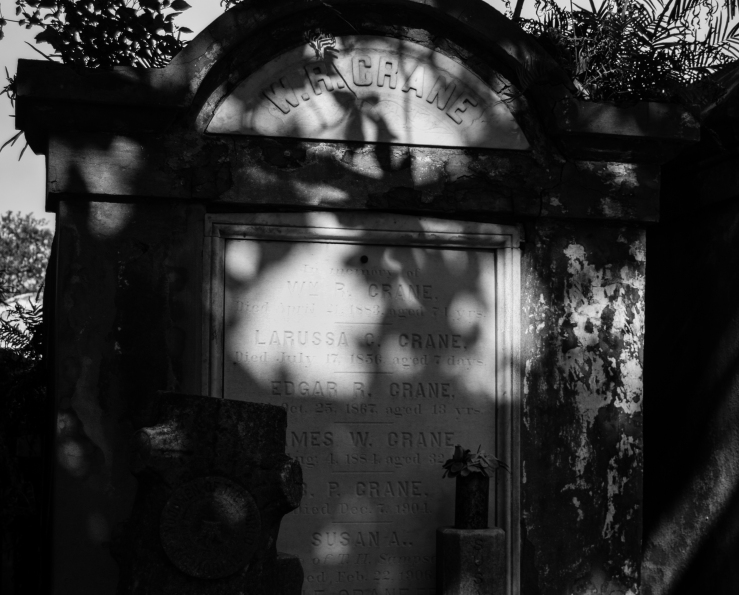 Lafayette Cemetery 33 (1 of 1)
