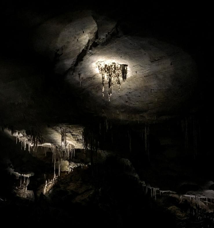 Carlsbad Caverns 1 (1 of 1)