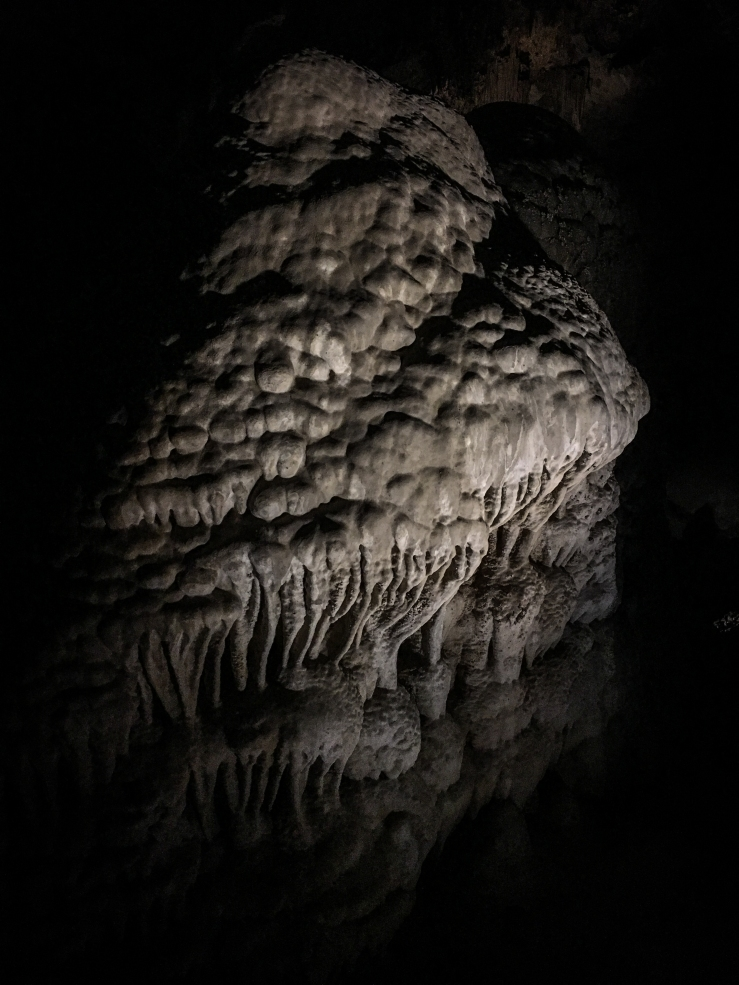 Carlsbad Caverns 6 (1 of 1)