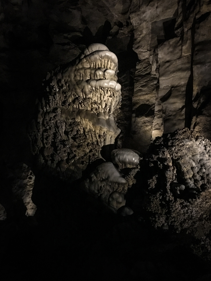 Carlsbad Caverns 8 (1 of 1)